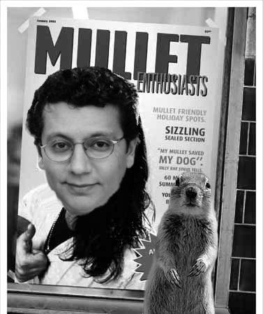 Ted mullet squirrel
