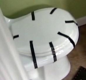 Toilet-rats-081110