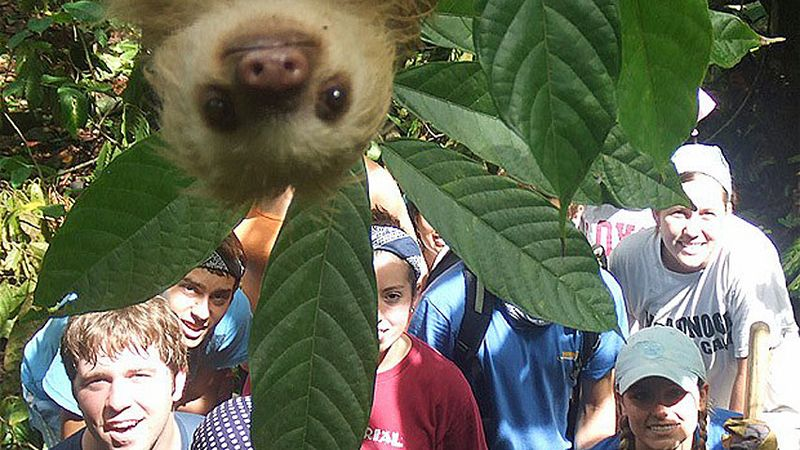 Hi-sloth-photobomb-852