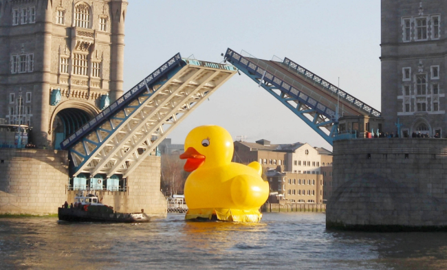 50ft-duck-on-the-thames-ay_99608591