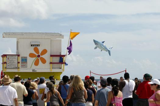 Flying_shark
