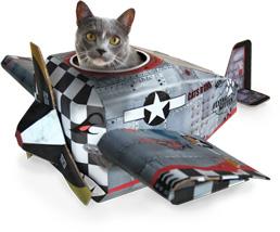 Catplayplane